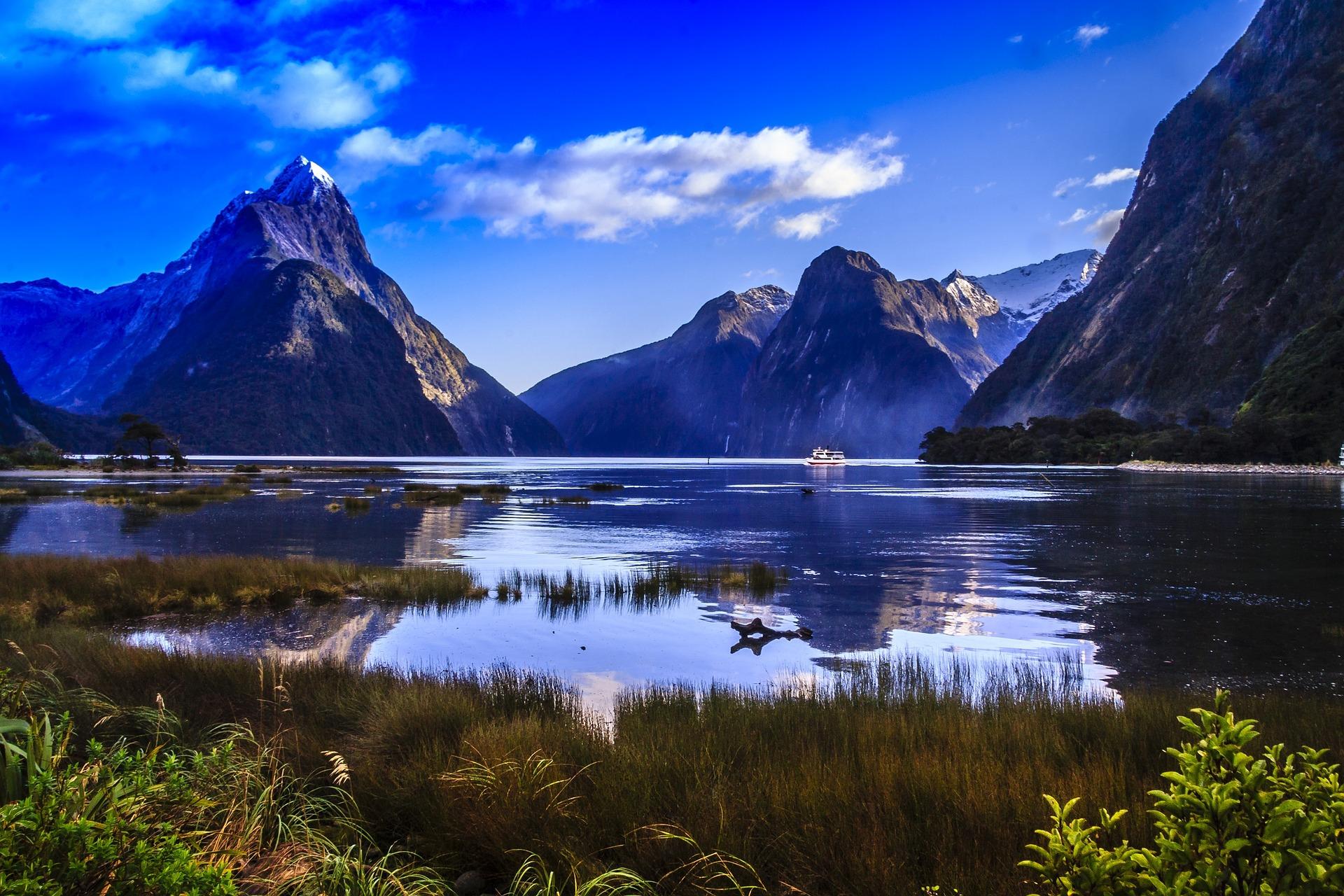 New Zealand Citizen